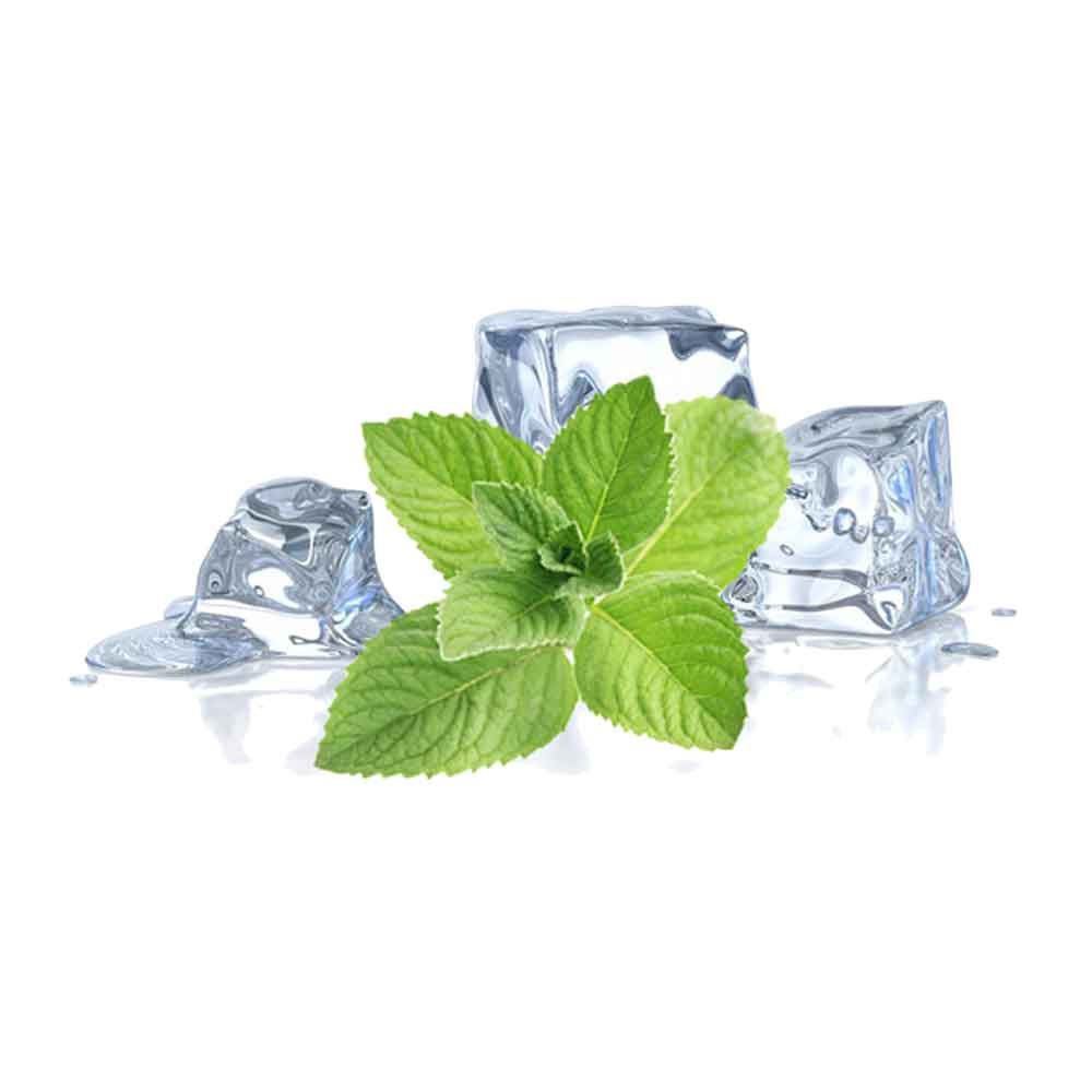 Menthol Icy Mint E-Liquid by Nasty Salt Review